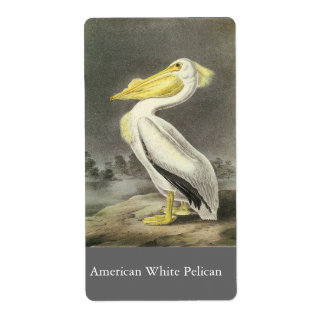 American White Pelican John Audubon Personalized Shipping Label