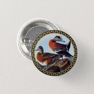 American Widgeon ducks on a rock 1 Inch Round Button