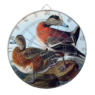 American Widgeon ducks on a rock Dartboard