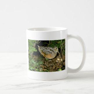 American Woodcock with eggs Coffee Mug