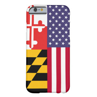 Ameri'Land Flag Case