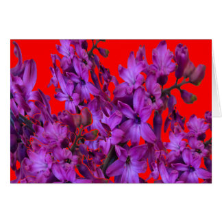 Amethyst Purple  Hyacinth RED Floral gift Card