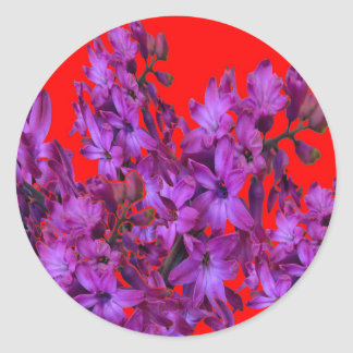 Amethyst Purple  Hyacinth RED Floral gift Classic Round Sticker