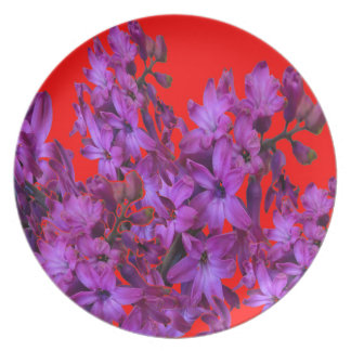 Amethyst Purple  Hyacinth RED Floral gift Plate