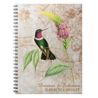 Amethyst Throated Hummingbird Notebooks