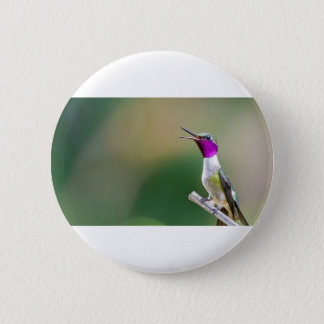 Amethyst Woodstar Hummingbird 2 Inch Round Button