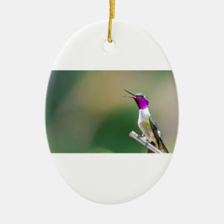 Amethyst Woodstar Hummingbird Ceramic Oval Ornament
