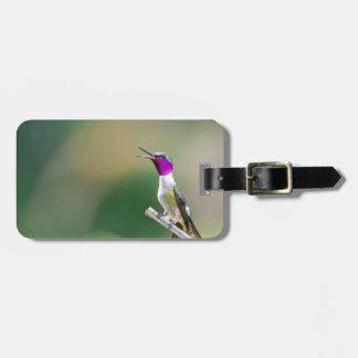 Amethyst Woodstar Hummingbird Luggage Tag
