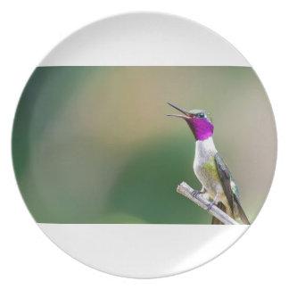 Amethyst Woodstar Hummingbird Plate