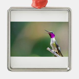 Amethyst Woodstar Hummingbird Silver-Colored Square Ornament