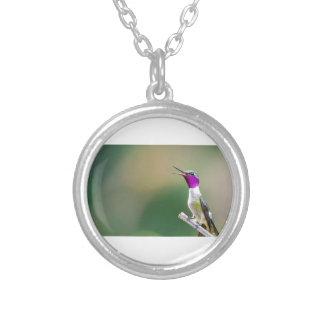 Amethyst Woodstar Hummingbird Silver Plated Necklace
