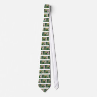 Amethyst Woodstar Hummingbird Tie