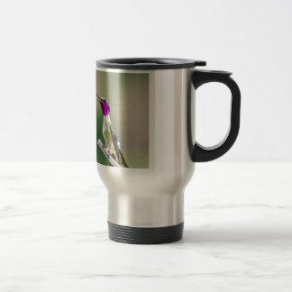 Amethyst Woodstar Hummingbird Travel Mug