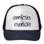 Amicus Curiae Judge Hat