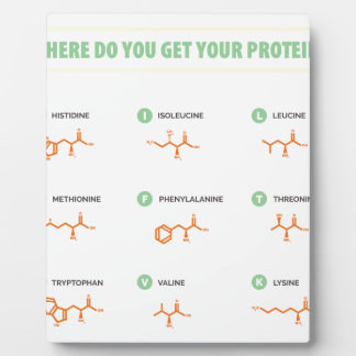 Amino Acids - Where do you get your protein? Plaque