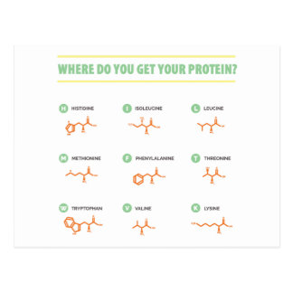 Amino Acids - Where do you get your protein? Postcard
