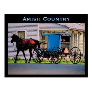 Amish Buggy Postcard