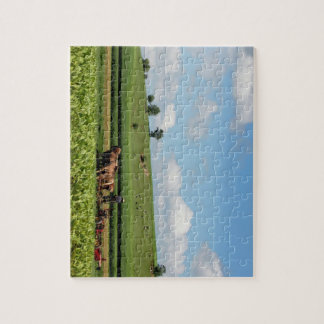 Amish Country Jigsaw Puzzle