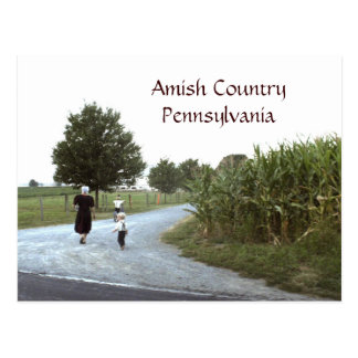 Amish Country Pennsylvania PA Postcard
