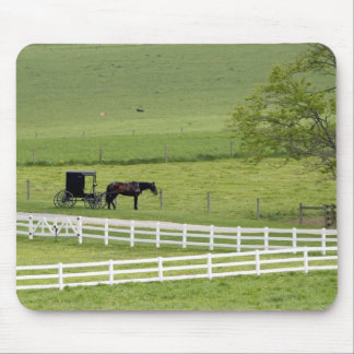 Amish farm with horse and buggy near Berlin, Mouse Pad
