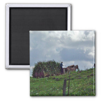 Amish Harvest Magnet