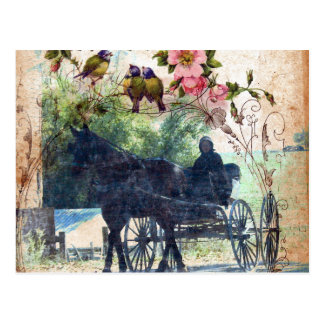 Amish Horse and Buggy Birdie Texture Postcards