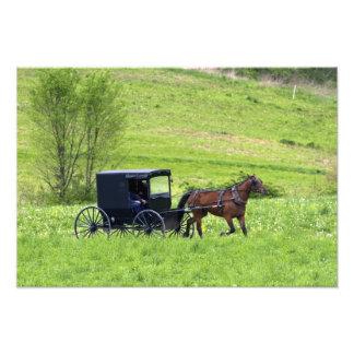 Amish horse and buggy near Berlin, Ohio. Photo