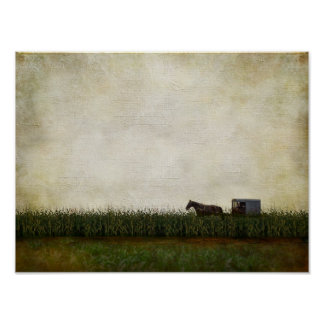 Amish horse and buggy poster