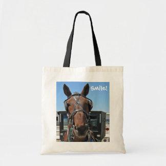 Amish Horse Smile!