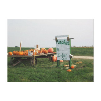 Amish Pumpkin Patch Farm Photography Wall Art