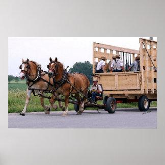 Amish Wagon Belgian Horses Poster Print