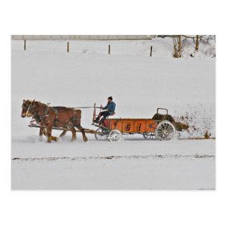 Amishman Preparing the Winter Field-Postcard Postcard
