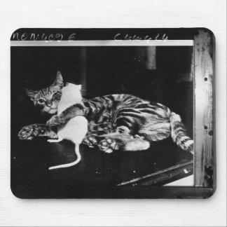 Amitié étonnante - chat Minnie et souris de Mike Tapis De Souris