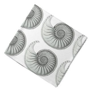 Ammonite Kerchief