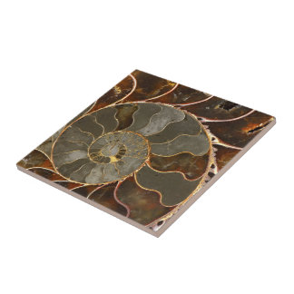 Ammonite Tile
