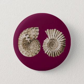 Ammonites 2 Inch Round Button