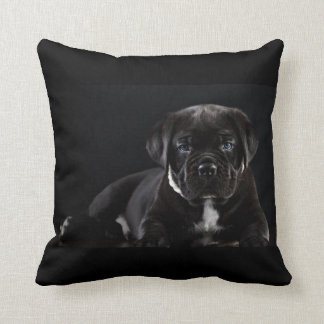 Amofada With Dog of Blue Eyes Throw Pillow
