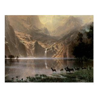 Among the Sierra Nevada Mountains Postcard