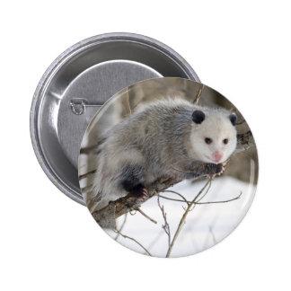 Amour d opossum pin's avec agrafe
