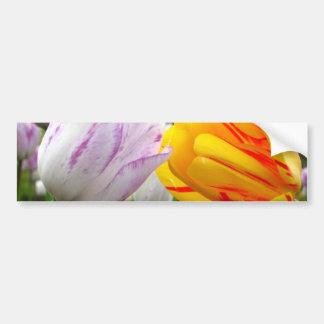 Amour de tulipe autocollant de voiture
