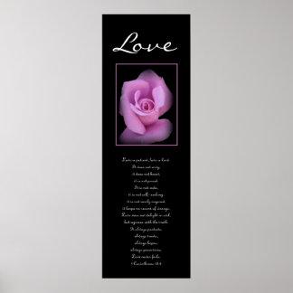 Amour - rose de rose affiches