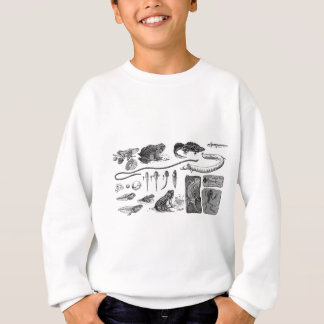 Amphibian Evolution Sweatshirt