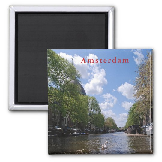 Amsterdam. Canal. Swan. Magnet