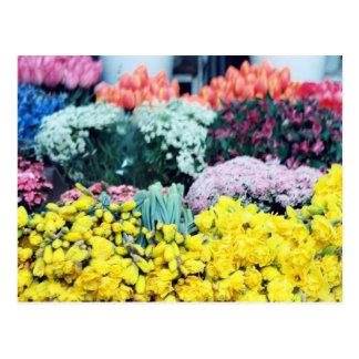 Amsterdam Flowermarket Postcard