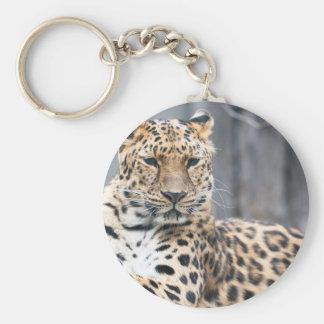 Amur Leopard Basic Round Button Keychain