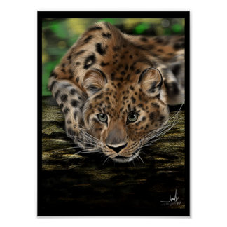 Amur Leopard In Tree Poster Prints