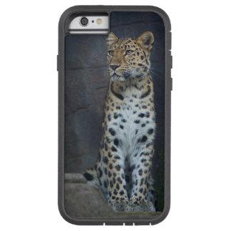 Amur Leopard iPhone 6 Case