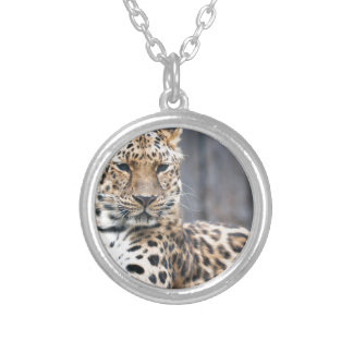 Amur Leopard Silver Plated Necklace