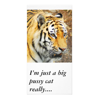 Amur Tiger, I'm just a big pussy cat really.... Personalized Photo Card