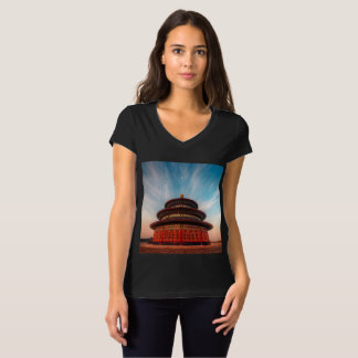 An Amazing Historic Building for Everyone T-Shirt